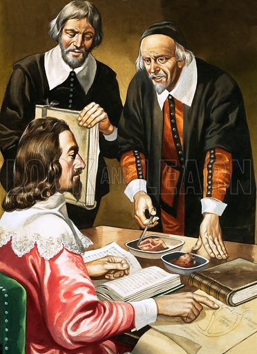 Charles I and William Harvey discussing the heart. Original artwork.