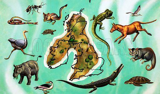 Unidentified montage of animals around map of Great Britain. Original artwork.