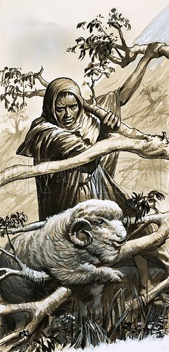 """While Shepherds Watched"" The shepherds of Bethlahem were men of courage and determination. They had to guard their sheep against wild animals and rescue them when they became trapped. Original artwork from Look and Learn no. 362 (21 December 1968)."