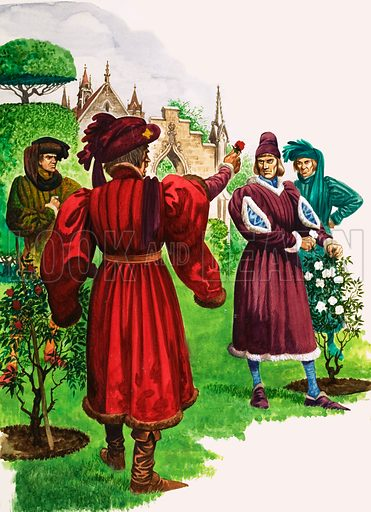 The Wonderful Story of Britain: The Wars of the Roses. The Duke of York and the Duke of Somerset pick a white and a red rose as their respective badges after a violent quarrel in the Temple Garden. Original artwork from Treasure no. 75 (20 June 1964).