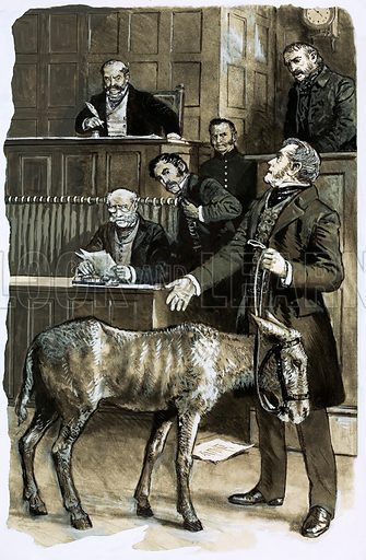 The Animal Defenders: Help for the Helpless. Richard Martin, the MP behind the Animal Protection Act, in court with a neglected donkey. Original artwork from Look and Learn no. 718 (18 October 1975).