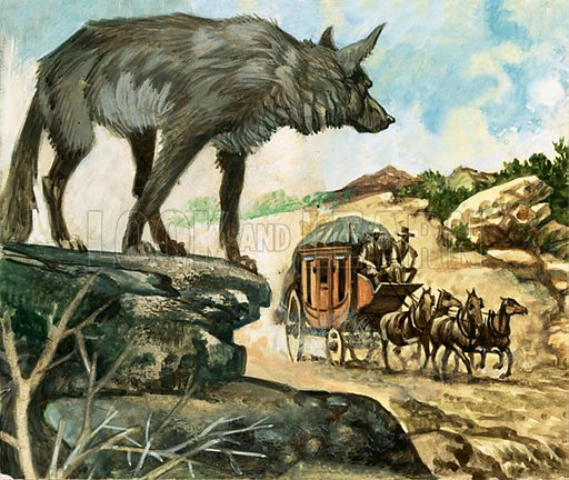 Wheels Across the West. Bandits, indians and hungry wolves were among the hazards which beset stage coach travellers in the wild west. Original artwork from Look and Learn Book 1975.