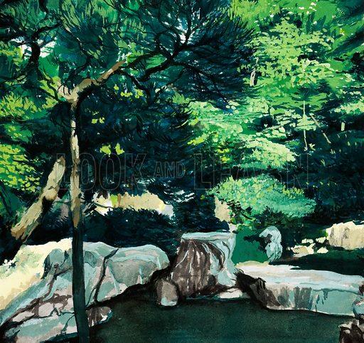 Unidentified woodland scene. Original artwork.