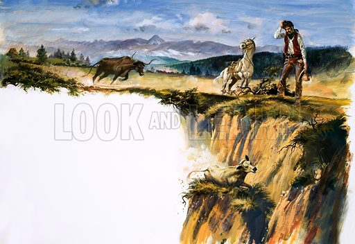 Unidentified cowboy scratches head as he wonders how to save a steer that has fallen partway down a cliff face. Original artwork.