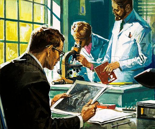 Unidentified scientists, one looking at photographs, one looking through a microscope. Original artwork.