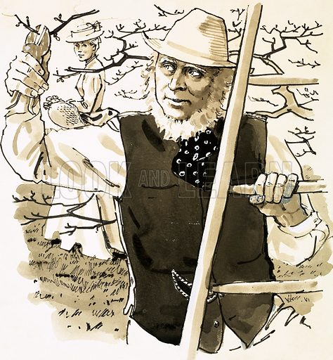 """Single Success. RD Blackmore, the """"gentleman market gardener"""" who wrote Lorna Doone. Original artwork from Look and Learn Book 1981."""