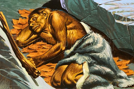 Cave man sleeping. Original artwork for World of Knowledge Annual 1983.