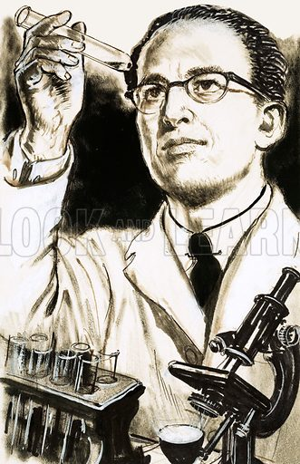 Men of Vision: The Vital Vaccine. Dr Jonas Salk, creator of the polio vaccine, looks at a test tube. Original artwork from Look and Learn no. 431 (18 April 1970).