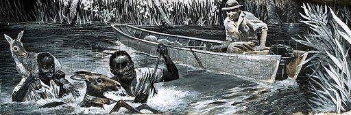 Africans rescuing animals. Original artwork,.