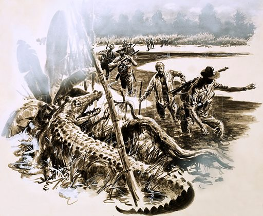 Harry Murray's Escape. Dressed only in his pyjamas, Harry Murray plunged through the crocodile infested swamps of New Guinea, his men unable to use their rifles for fear of alerting the invading Japanese army. Original artwork from Look and Learn no. 221 (9 April 1966).