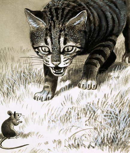 Cat approaching mouse. Original artwork.