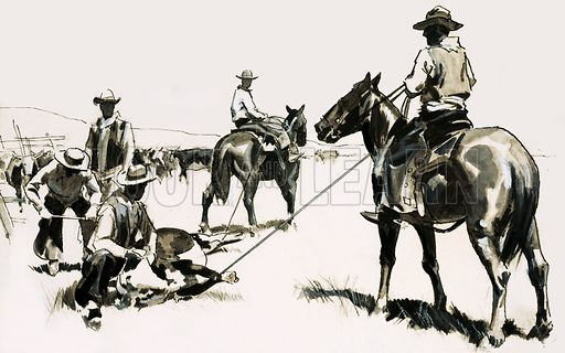 The American Cowboy: The Man behind the Legend. Roping and branding cattle in the wild west. Original artwork from Look and Learn no. 478 (13 March 1971).