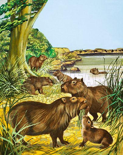 Unidentified animals by a pool. Original artwork.