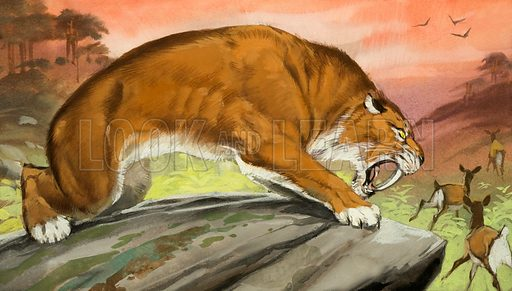 Sabre-toothed tiger out hunting.