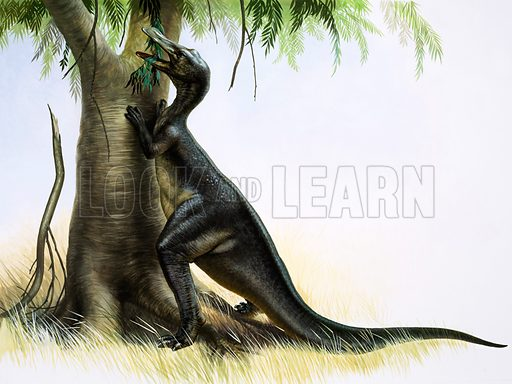 Anatosaurus. Original artwork.