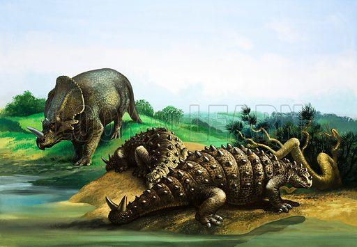 Monoclonius and Scolosaurus. Original artwork.