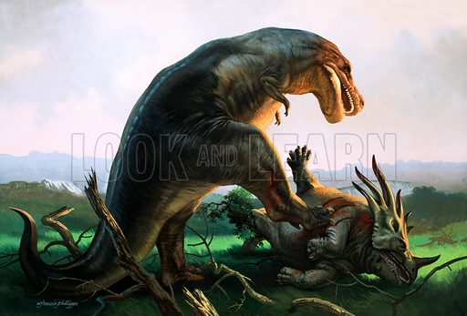 Tyrannosaurus Rex eating a Styracosaurus, dinosaurs of the Cretaceous Period