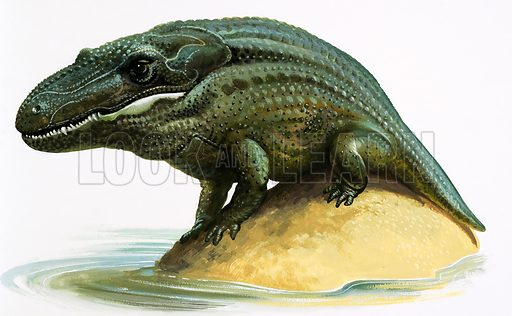 Mastodosaurus.  Original artwork.