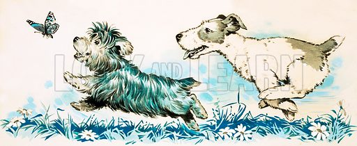 Dogs chasing a butterlfly. Original artwork for Playhour Holiday Special 1983.