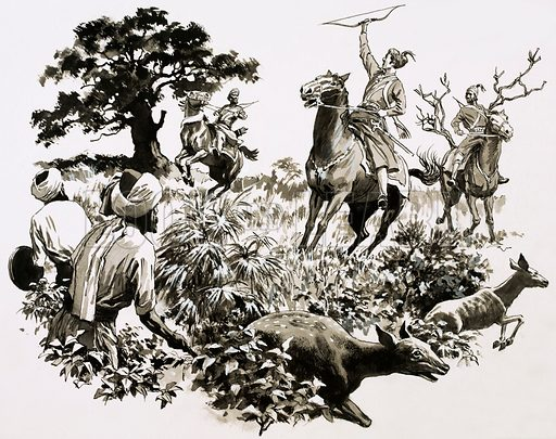 The Great Reign of the Lucky Emperor. Akbar, King of Hindustan, one took part in a gamargha hunt, where men drove every living creature into a small area of jungle where they could be slaughtered. Original artwork from Look and Learn Book 1983.