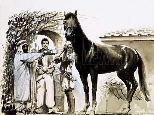 Other People's Countries: Morocco. Sultan Moulai Ismail gave Tom Pellow a horse to ride and made him a captain in his army. Original artwork from Look and Learn no. 105 (18 January 1964).