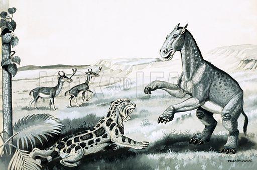 Prehistoric animals.
