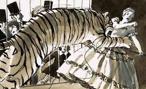A female circus trainer being attacked by a harshly-treated tiger. Original artwork from Look and Learn Book 1977.