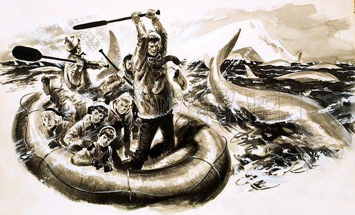 Adventure in the Barren Lands, illustration from the serial by Glyn Frewer. As the whales closed in on the rubber dinghy, paddles were smashed down on the water to scare them away. Original artwork from Look and Learn no. 117 (11 April 1964).
