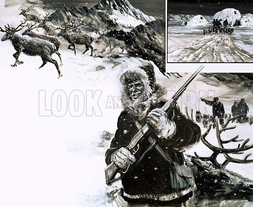 Modern Adventurers: The Man Who Discovered the Blond Eskimos. Vilhjalmar Stefansson went into the Arctic to hunt caribou and discovered a deserted village with tracks leading away from it (inset). Original artwork from Look and Learn no. 744 (17 April 1976).
