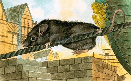 Plague rat, picture, image, illustration