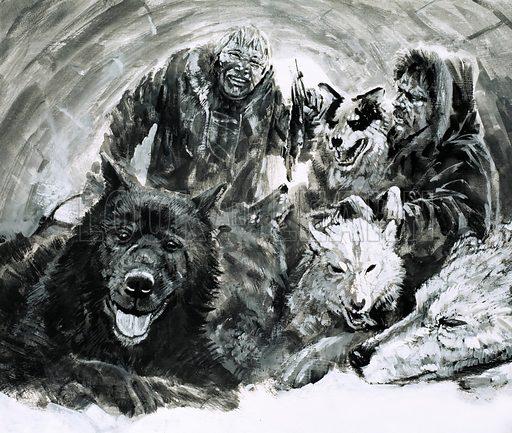 Vilhjalmar Stefansson, picture, image, illustration