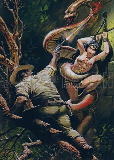Colonel Percy Fawcett saving a beautiful Indian maiden from a ritual sacrifice at the fangs of a giant sacred snake, as recounted by an adventurer named Tex Harding. Note: Top of image extended in Photoshop.
