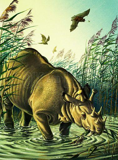Prehistoric rhinoceros.
