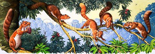 Prehistoric Animals (Plesidapis).