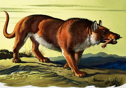 Andrewsarchus Mongoliensis.