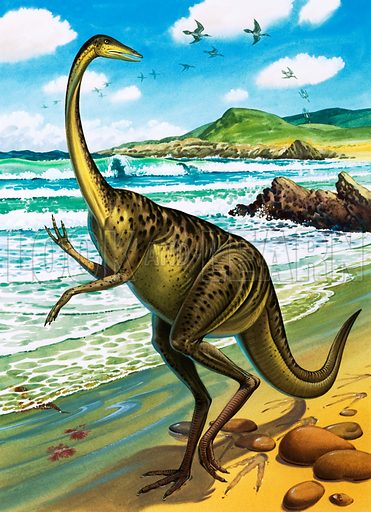 Ornithomimus and Ichthyornis Victor,  picture, image, illustration