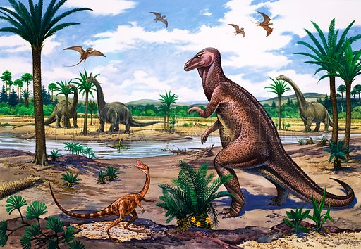 Brontosaurus, Compsognathus and Camtosaurus.
