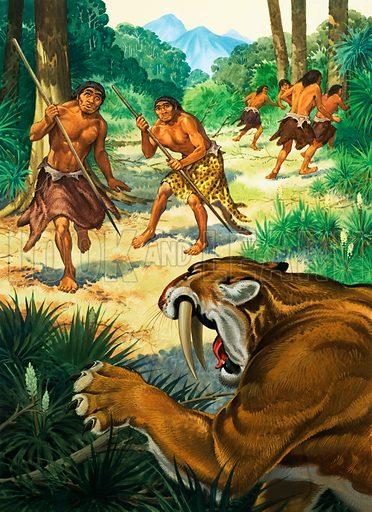 Sabre tooth tiger attacking Homoerectus.