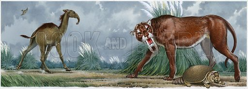 Sabre-tooth tiger and other prehistoric animals.