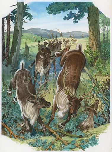 Prehistoric deer being pursued by stone age hunters