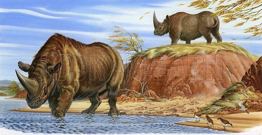 Elasmotherium.