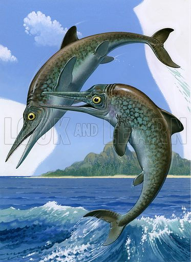 Ichthyosaurs.