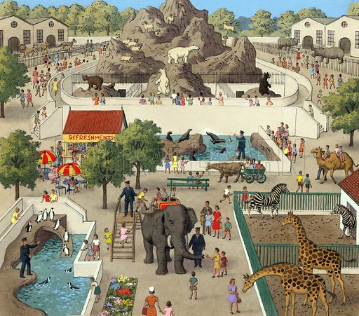 Scene at a zoo.