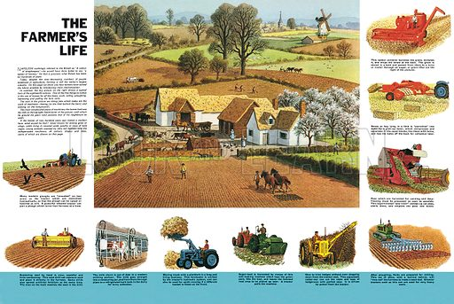 The Farmer's Life. Professionally re-touched illustration.