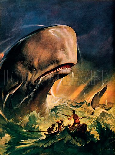 The great white whale, scene from Moby Dick, by American novelist Herman Melville. Professionally re-touched image.
