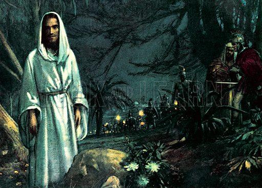 The Garden of Gethsemane.