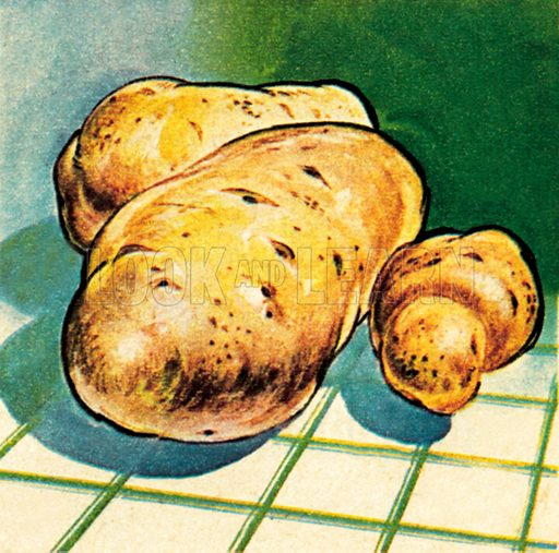 Potatoes. NB: Scan of small illustration.