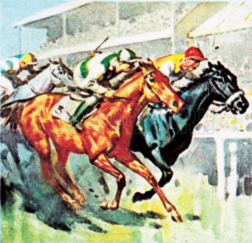 Horseracing. NB: Scan of small illustration.