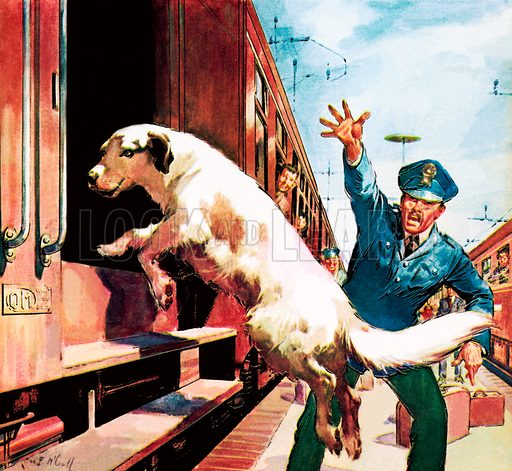 Famous Dogs: Lampo, the travelling dog.