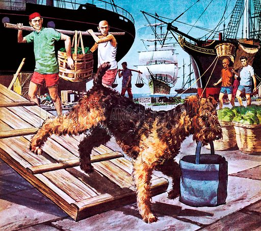 Famous Dogs: The Round-the-World Dog. Owney the mongrel was adopted by the staff of the Albany Post Office in New York and rode Post Office trucks until he had visited every state in the Union. In 1895 he boarded the SS Victoria and set off around the world.